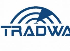 logo_pit_radwar